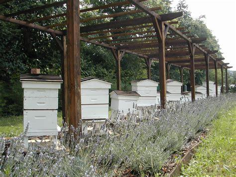 apiary location bee heaven farm surrey the hive honey shop