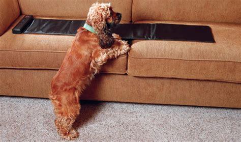 sofa savertm sofa savertm sofa seat saver uk centerfieldbar thesofa