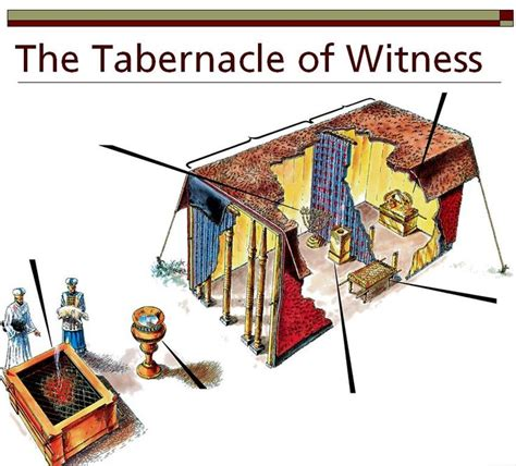 tabernacle in the wilderness diagram 43 best tabernacle images on