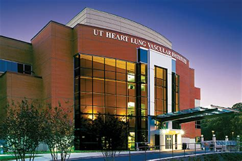 Mba Available Knoxville by The Department Of Medicine Cardiovascular Diseases