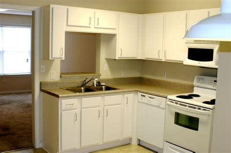 Apartment Kitchen Design Ideas Pictures Small And Simple House With Small Living Room Small Kitchen And A Small Bedroom