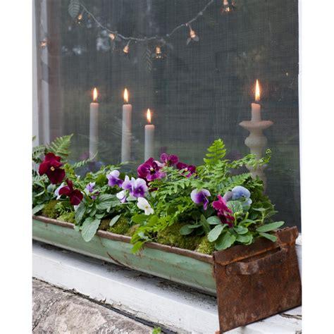 fioriere invernali 35 piccoli giardini invernali logos libri it