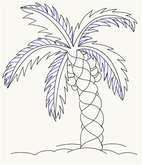 Palm Tree Leaves Drawing