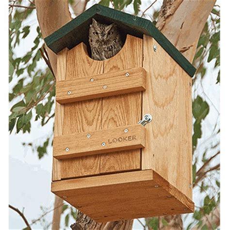 screech owl house nest box shop nwf