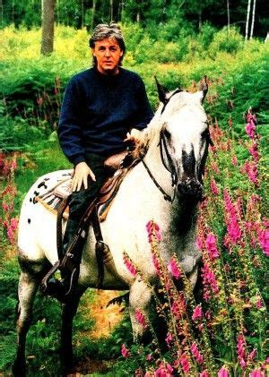 uk celebrities who love horses how paul mccartney learned from his wife linda to love