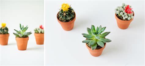 mini plants mini makeover mini plants basic wood shelf 187 hk in love