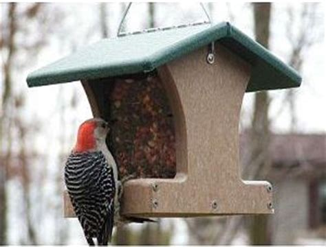 5 best bird feeders for winter audubon