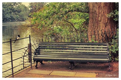 hyde park bench hyde park bench by pajunen on deviantart