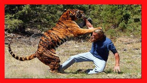 Imagenes De Animales Impactantes | ataques animales m 225 s impactantes a humanos animales