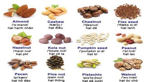 cuña in english từ vựng tiếng anh c 225 c loại hạt toomva