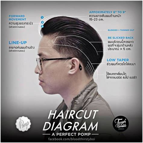 mens haircuts guide 63 best images about diagram haircut on pinterest