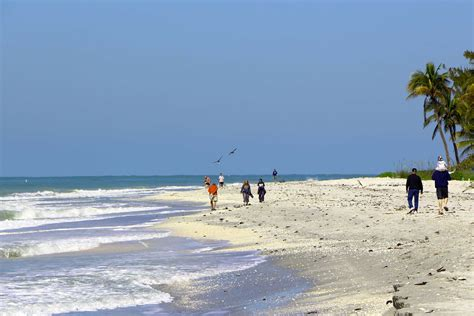friendly beaches florida marco island florida sanibel scoop captiva chatter