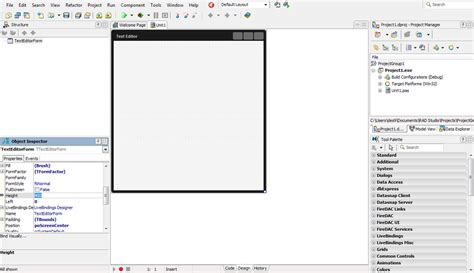 tutorial delphi embarcadero basic customization of the main form ide tutorial rad