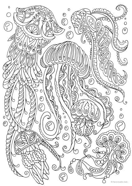 jellyfish coloring page for adults ocean life jellyfish printable adult coloring pages