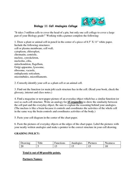 Cell City Analogy Worksheet by 18 Best Images Of Cell City Worksheet Answer Key Cell