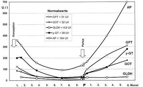 protein z schwangerschaft huchzermeyer fachbuch erkrankungen leber