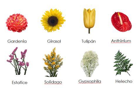 imagenes de flores naturales con sus nombres nombres de flores el geeky