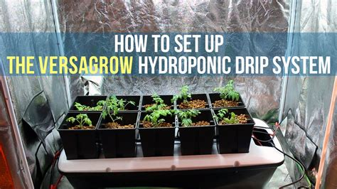 how to set up a hydroponic drip system for indoor