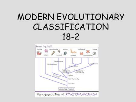 section 18 2 modern evolutionary classification answers worksheets section 18 2 modern evolutionary