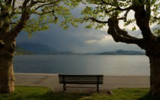 the park bench how would you like a state of calm and alertness to be