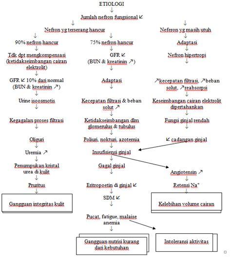 format askep medical bedah askep anak gagal ginjal kronik 2 belajar askep
