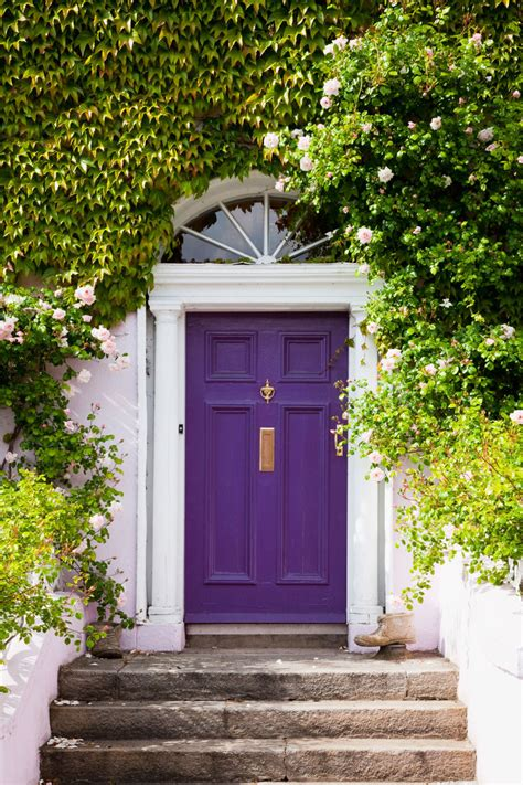 Painting Shutters And Front Door by Front Doors Impressive Painting Shutters And Front Door