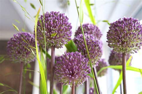 floraldesign bremen floraldesign bremen startseite