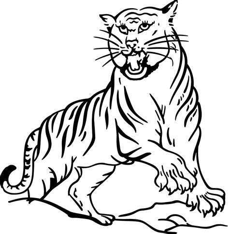 free printable animal tiger coloring pages