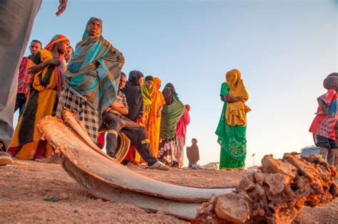 international vacancies somalia unjobs urgent action needed to help millions facing famine in