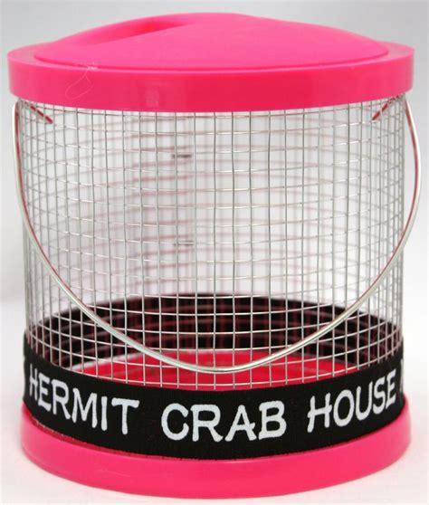 hermit crab heat l 122 best images about hermit crabs on pinterest sea