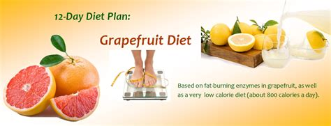 The 7 Day Grapefruit Detox Weight Loss Diet Recipe Ideas by 3 Day Diet Plan A Fad Diet For Fast Weight Loss Diet