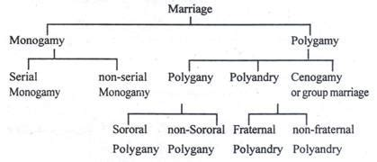 Serial Monogamy In Dating by Marriage Characteristics And Types Of Marriage