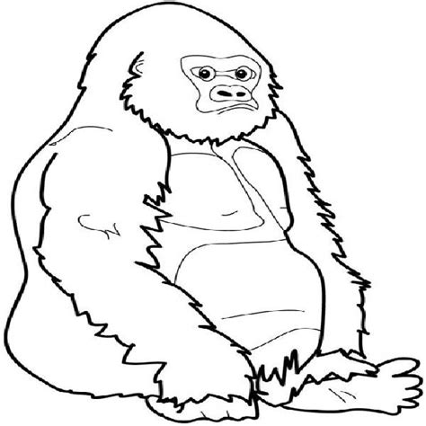 gorilla outline coloring page baby mountain gorilla coloring pages pictures to pin on