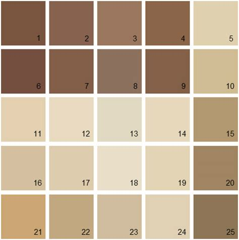 benjamin color swatches brown color swatch pixshark com images galleries