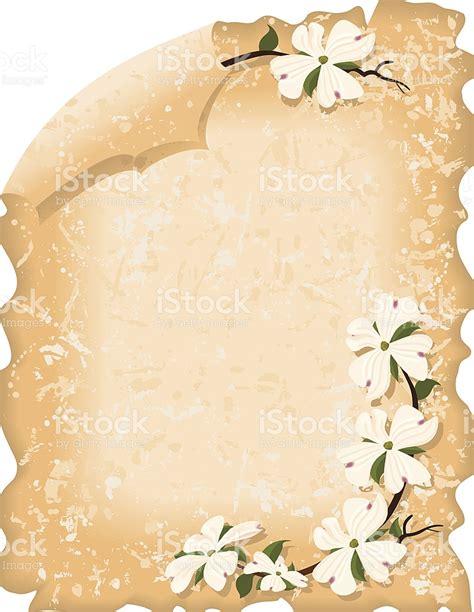 clipart pergamena pergamena con fiori dogwood illustrazione 137306308 istock