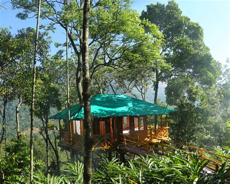 dreamcatcher munnar dream catcher munnar cottages booking 088836 22555