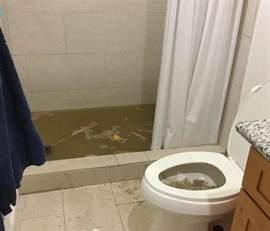 Upholstery Honolulu Overflowed Toilet Servpro Of East Honolulu