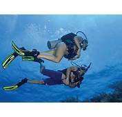 PADI Master Scuba Diver  Sea ExperienceSea Experience