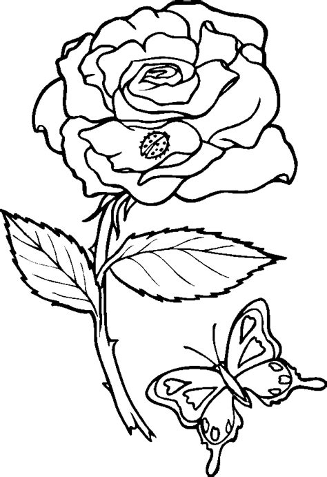 Girl Lip Tattoo Coloring Pages Of Flowers And Butterflies Coloring Pages Of Roses And Butterflies