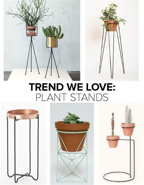 Stand Planter 1000 ideas about indoor plant stands on house