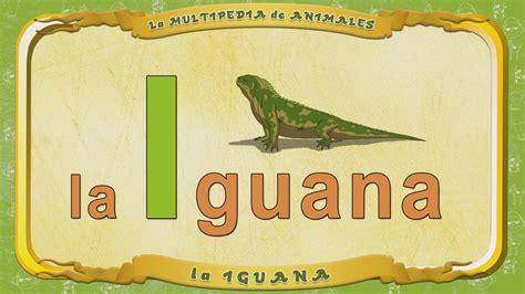 imagenes de animales por la letra v la multipedia de animales letra i la iguana youtube