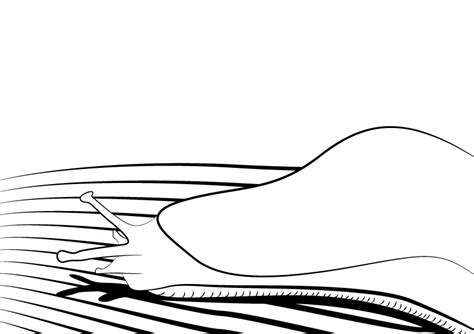 grenuker slug coloring pages coloring pages