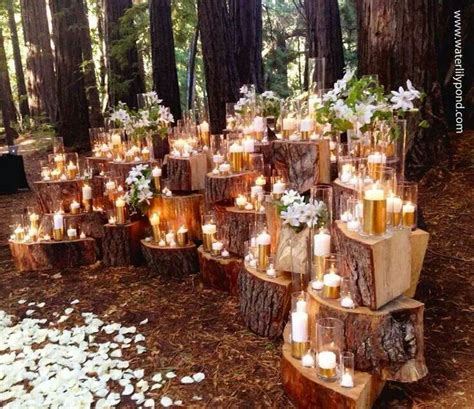 fall backyard wedding best photos wedding ideas