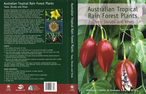 names of plants in the tropical rainforest names of the tropical rainforest plants imageskavanahshabbat