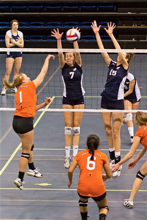 setter definition volleyball the volleyball definition for three blocking terms