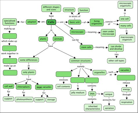 concept map cell concept map answer key my blog