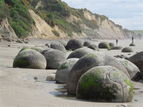 invercargill catlins moeraki boulders and rare yellow eyed and little blue penguins