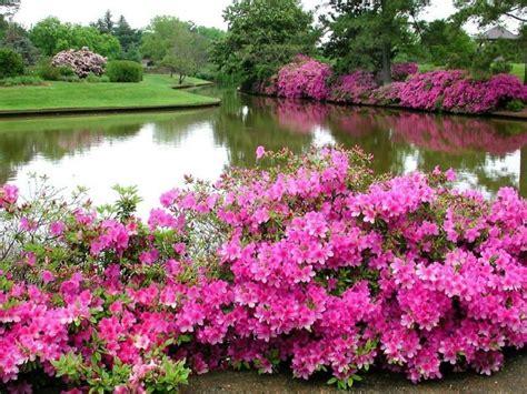 beautiful images beautiful scenery