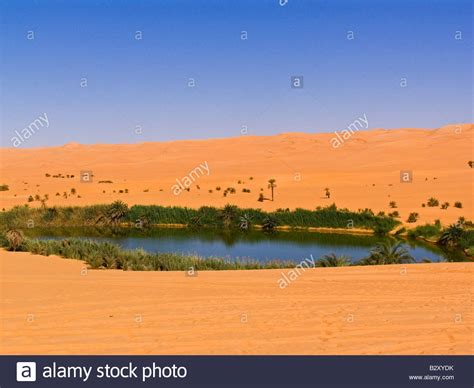 africa libya desert oasis of mafu stock photo 19031983