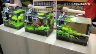 small tank aquascaping aquascaping aquarium ideas from aquatics live 2011 part